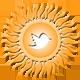 sun_button_t_80